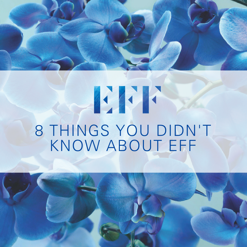 8 Things You Didn't Know About EFF